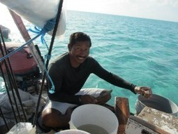 How a growing partnership is reducing overfishing in Belize and beyond   Financing Nature Conservation   Scoop.it