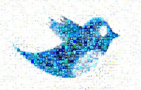 Influencia - Etudes - Usages et pratiques de Twitter en France | Infographics and inspirations | Scoop.it