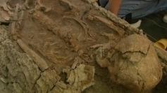 La tombe de Sarliève livre ses secrets et celui du métier d ... - France 3 | Histoire et Archéologie | Scoop.it