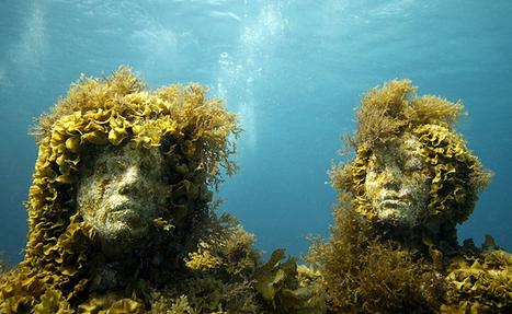 Les faux récifs coralliens de Cancún sont pleins de vie ! Une réussite ! | Autres Vérités | Scoop.it