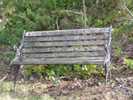 The Bench By Delinda McCann | The Write Room Blog | Water the mind - READ | Scoop.it