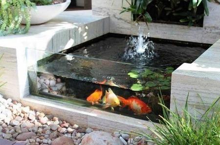 desain kolam ikan minimalis di lahan sempit - renunganku