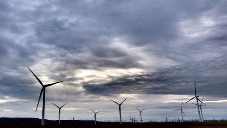 Les Allemands payés pour consommer de l'électricité | great buzzness | Scoop.it