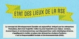 Infographie : RSE : de l'art de bien communiquer sur vos initiatives | Le flux d'Infogreen.lu | Scoop.it
