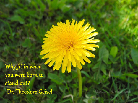 Quote by Dr. Theodore Geisel | The Muse | Scoop.it