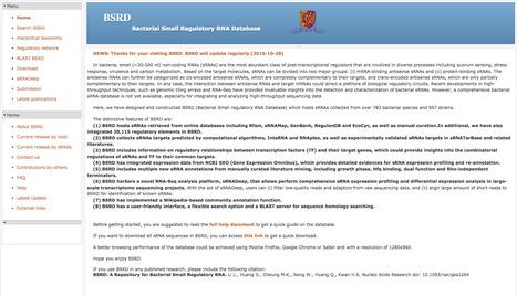 BSRD: A Bacterial Small Regulatory RNA Database | bioinformatics-databases | Scoop.it