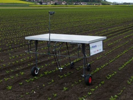 Le robot autonome de désherbage arrive bientôt | Chimie verte et agroécologie | Scoop.it