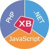 Web Development and Software Testing