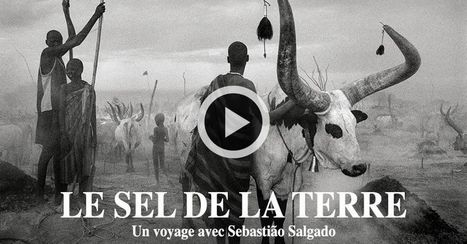 Le Sel de la Terre | Ca m'interpelle... | Scoop.it