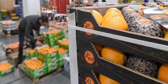 Une majorité des fruits et légumes conventionnels présentent des résidus de pesticides
