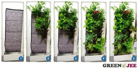 Greenjee le mur végétal int&eacut...
