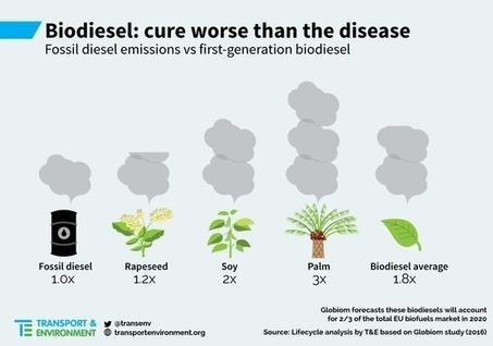 Les biocarburants émettent plus de CO2 que l'essence et le diesel | Toxique, soyons vigilant ! | Scoop.it