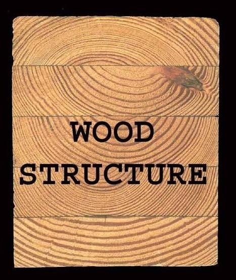 Estructura de la madera | Botánica | Scoop.it