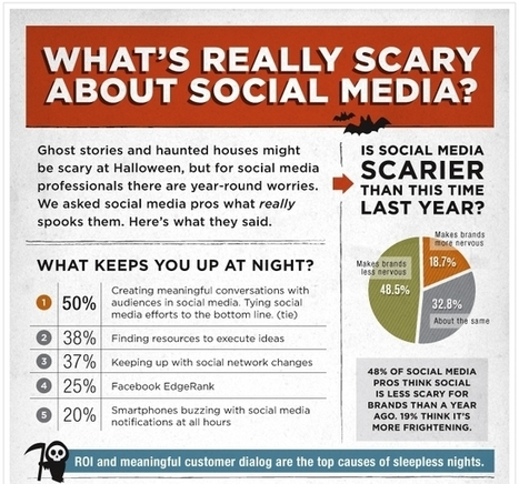 [infographie] 40% des community managers ont peur de devoir justifier le ROI de leurs actions | Social Media Curation par Mon Habitat Web | Scoop.it
