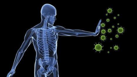 Una gota de sangre revela todos los virus que han pasado por tu cuerpo   Emprendimientos Agiles   Scoop.it