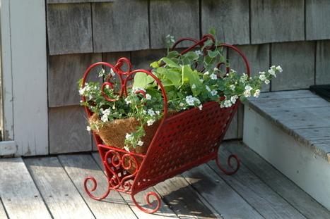 Upcycled Container Gardening | Kanelstrand | Container Garden Cornucopia | Scoop.it