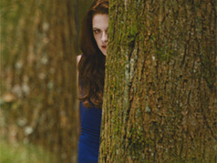 'Breaking Dawn' Characters Meet Their 'Destinies' In 'Part 2' - MTV.com   The Twilight Saga   Scoop.it