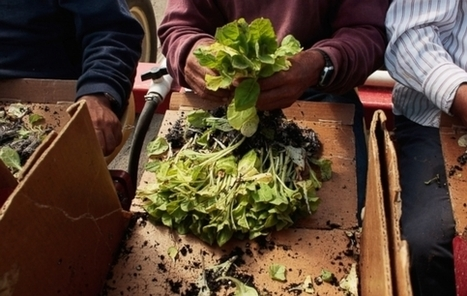 Video: The Obesity Epidemic Among California's Farmworkers   Vertical Farm - Food Factory   Scoop.it