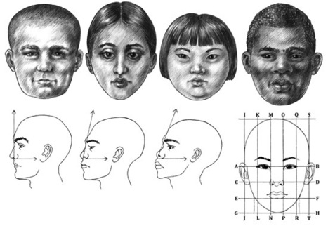 reference guide face drawing in drawing references and resources