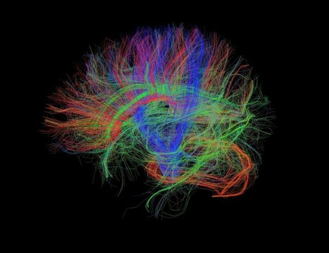 This Is Your Brain on Writing | Linking Literacy & Learning: Research, Reflection, and Practice | Scoop.it