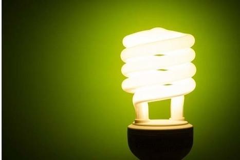 How energy efficiency will reshape power markets | Développement durable et efficacité énergétique | Scoop.it