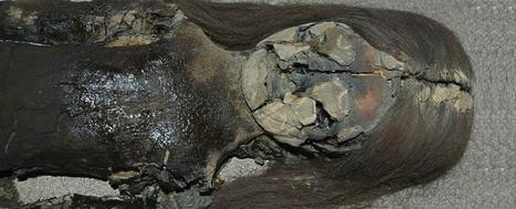 The Oldest Mummies in the World Are Turning Into Black Slime | News in Conservation | Scoop.it