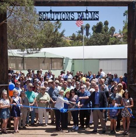Solutions Farms Opens Social Enterprise Aquaponic Venture | Vertical Farm - Food Factory | Scoop.it