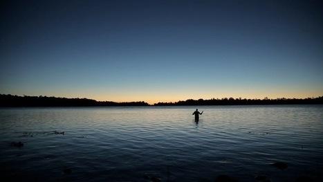 Gorgeous Video Captures Everyday Life in Tasmania - My Modern Metropolis   Le It e Amo ✪   Scoop.it