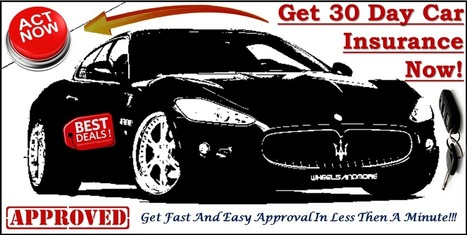 One Day Car Insurance Quote Scoop It