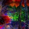Mixed Media Digital Art