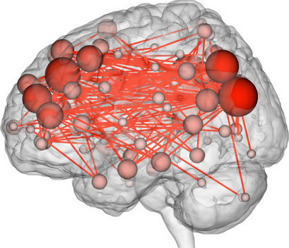 Scientists Can Now Predict Intelligence From Brain Activity | Cognitive Neuroscience | Scoop.it