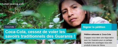 Comment Coca Cola vole un peuple autochtone sans défense | 16s3d: Bestioles, opinions & pétitions | Scoop.it