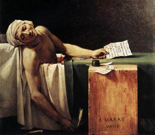 Frustraciones científicas bajo la piel enferma de un revolucionario / Reportajes / SINC | Educación y TIC | Scoop.it