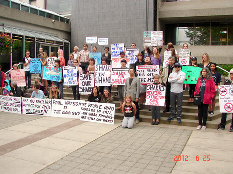 Burnaby, BC, Canada, to ban #shark fin trade | #ocean #scuba | ediving | Scoop.it