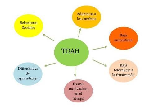 ¿Qué más características presenta el niñ@ con TDAH? | Educacion, ecologia y TIC | Scoop.it
