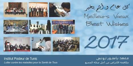 كل عام و أنتم بخير/meilleurs voeux/best wishes 2017 | Institut Pasteur de Tunis-معهد باستور تونس | Scoop.it