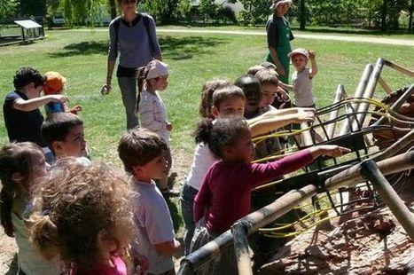 Nouvelle République : '' Scènes de nature '' au parc du Verger - environnement | ChâtelleraultActu | Scoop.it