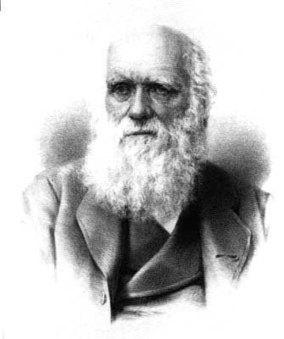 #328 ❘ De l'origine des espèces ❘ 1859 ❘ Charles Darwin | # HISTOIRE DES ARTS - UN JOUR, UNE OEUVRE - 2013 | Scoop.it
