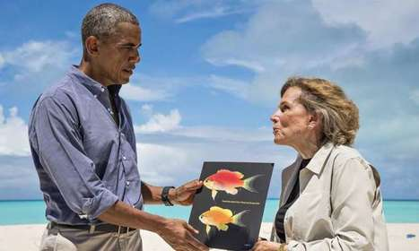Hawaii's newest fish species named in honor of President Obama   Communication design   Scoop.it