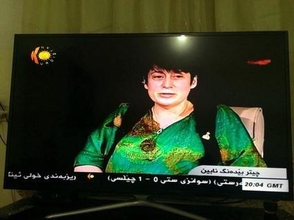 Mon projet de livre sur le génocide et mon amour du Kurdistan expliqués sur Kurdistan TV | Béatrice D. | Scoop.it