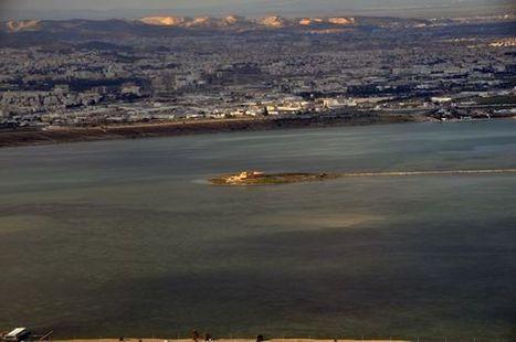 "Tunisia : New Ramsar site ""Complexe Lac de Tunis"" | Zones humides - Ramsar - Océans | Scoop.it"