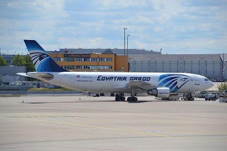 Le BEA notifié d'un «incident grave» entre un A320 Air France et un A300 EgyptAir Cargo | AFFRETEMENT AERIEN KEVELAIR | Scoop.it