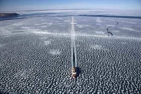 La concentration de CO2 dans l'atmosphère à un plus haut historique en mars | Toxique, soyons vigilant ! | Scoop.it