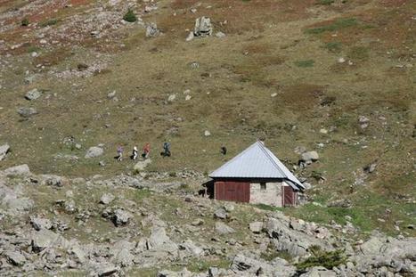 Belledone :  emboîtez le pas aux troupeaux | montagne | Scoop.it