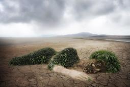 Axa et Nestlé parlent du changement climatique. Et n'auraient peut-être pas dû. | ISO 26000 facilite le développement humain | Scoop.it