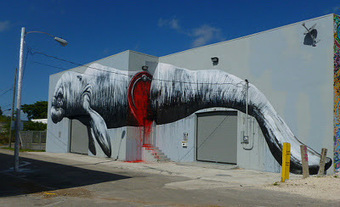 ROA New Mural In Miami Your Ultimate Street Art News Site   Art Installations, Sculpture, Contemporary Art   Scoop.it
