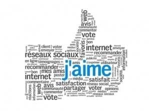 WordPress : 9 plugins pour bien intégrer les réseaux sociaux | Social Media Curation par Mon Habitat Web | Scoop.it