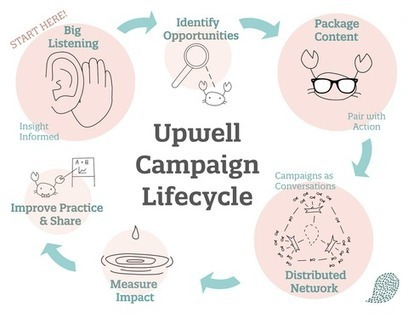 The Lifecycle of an Upwell Campaign | Upwell | Things charity | Scoop.it