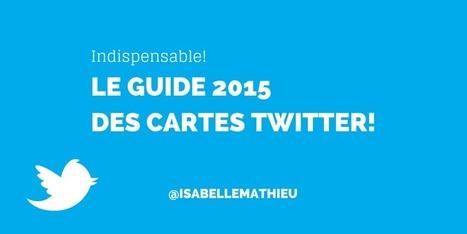 Guide des Cartes Twitter: Types, Installation, Bonnes pratiques   Médias sociaux : actualités et pépites du web   Scoop.it