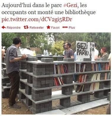 Manifestation à Istanbul : une bibliothèque comme arme de résistance - Actualitté.com   Les bibliothèques et moi   Scoop.it